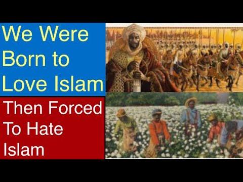 TRANSLATLANTIC SLAVE TRADE CAUSE BLACK HATE ON BLACK MUSLIMS-ISLAMIC THOUGHT SHOW #Islam #Arab #THC