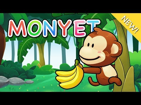 Lagu Anak Indonesia   Monyet