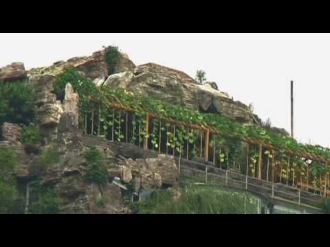 China: Beijing authorities to evict owner of luxury rooftop villa