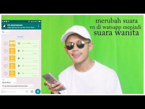 TUTORIAL whatsapp, mengubah suara vn di whatsapp