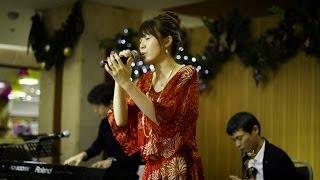 Dear Sun / ザ・シュンガーズ  Crescente Original  Music Crip