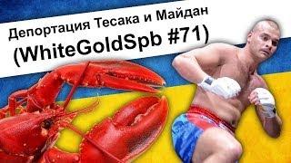 Депортация Тесака и Майдан (WhiteGoldSpb #71)