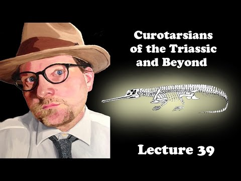 Lecture 39 Curotarsians of the Triassic and Beyond