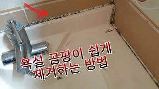 욕실 실리콘 곰팡이 침으로 매끈하게 해결! 욕실벽면 곰…