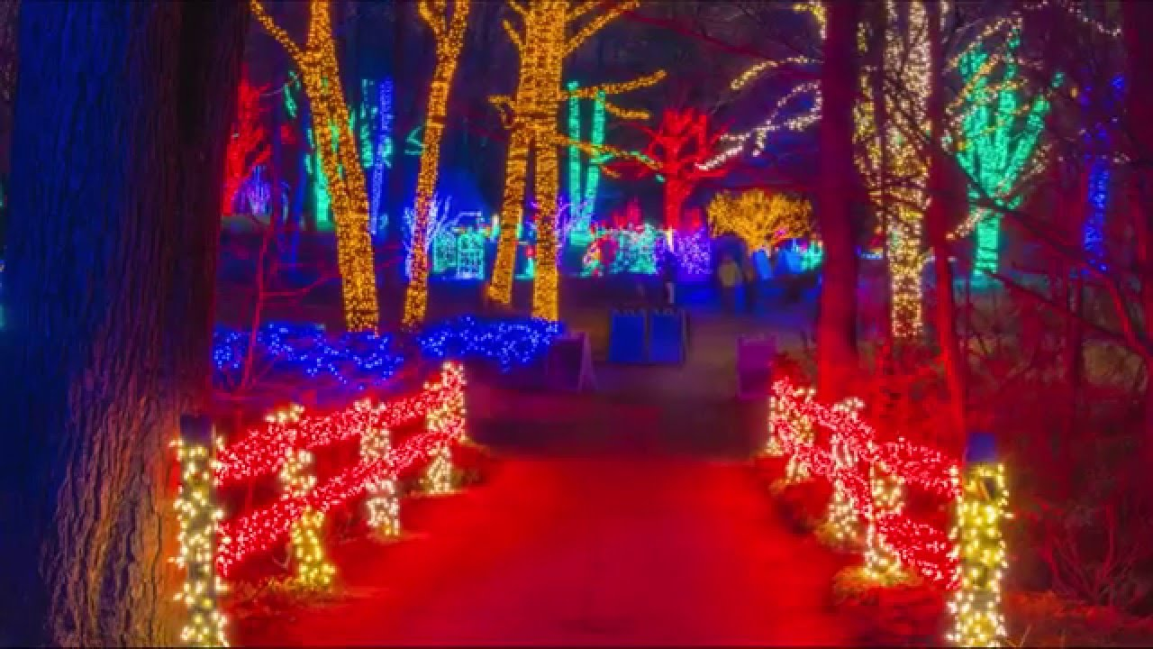2015 Meadowlark Gardens WInter Walk of