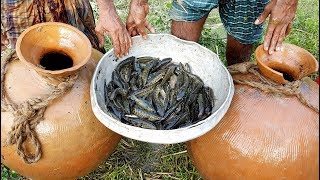Unusual Fishing | Trapping Huge Country Fish Using Big Pottery Pot | Big Pot Fish Catching