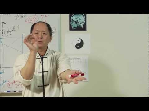 ^® Free Watch Understanding Qigong: Volume Six - Martial Arts Qigong Breathing