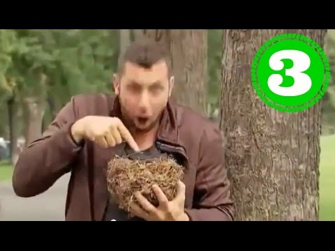 Розыгрыши - приколы видео, смешные «Розыгрыши» смотреть