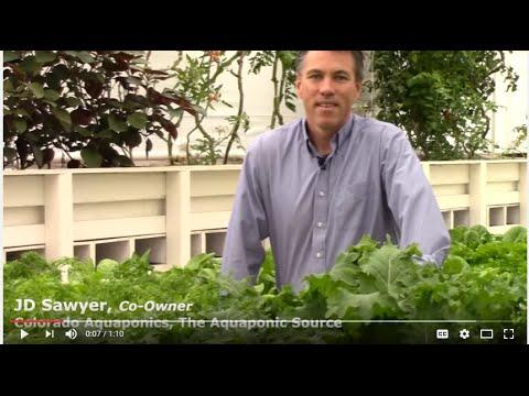 Aquaponic Greenhouse Training