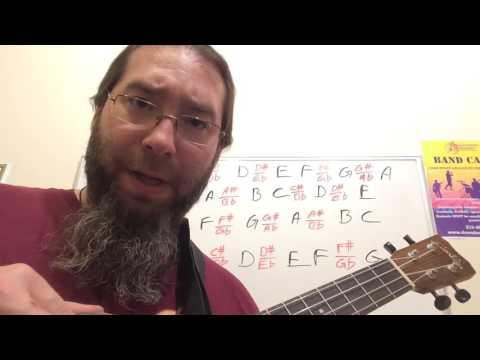 Fretted Instrument Breakdown Prt 2- The Ukulele fretboard