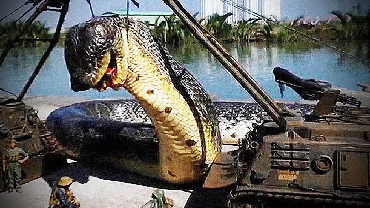 Foto ular terbesar di indonesia 94