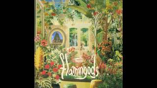 Flamingods - Mountain Man