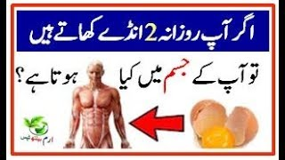 Health Benefits Of Egg | Anday k Fayde  | Benefits of Eating Eggs Everyda