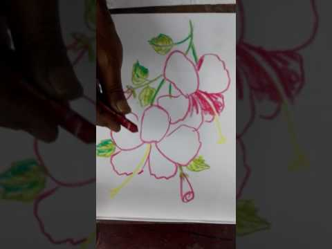 China Rose.pastels Drawings( chitrayan Art school GORABAZAR )