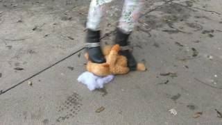 Teddy Bear Crush