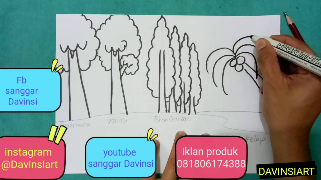 how to draw and colouring tree cara menggambar dan mewarnai pohon gradasi warna pohon
