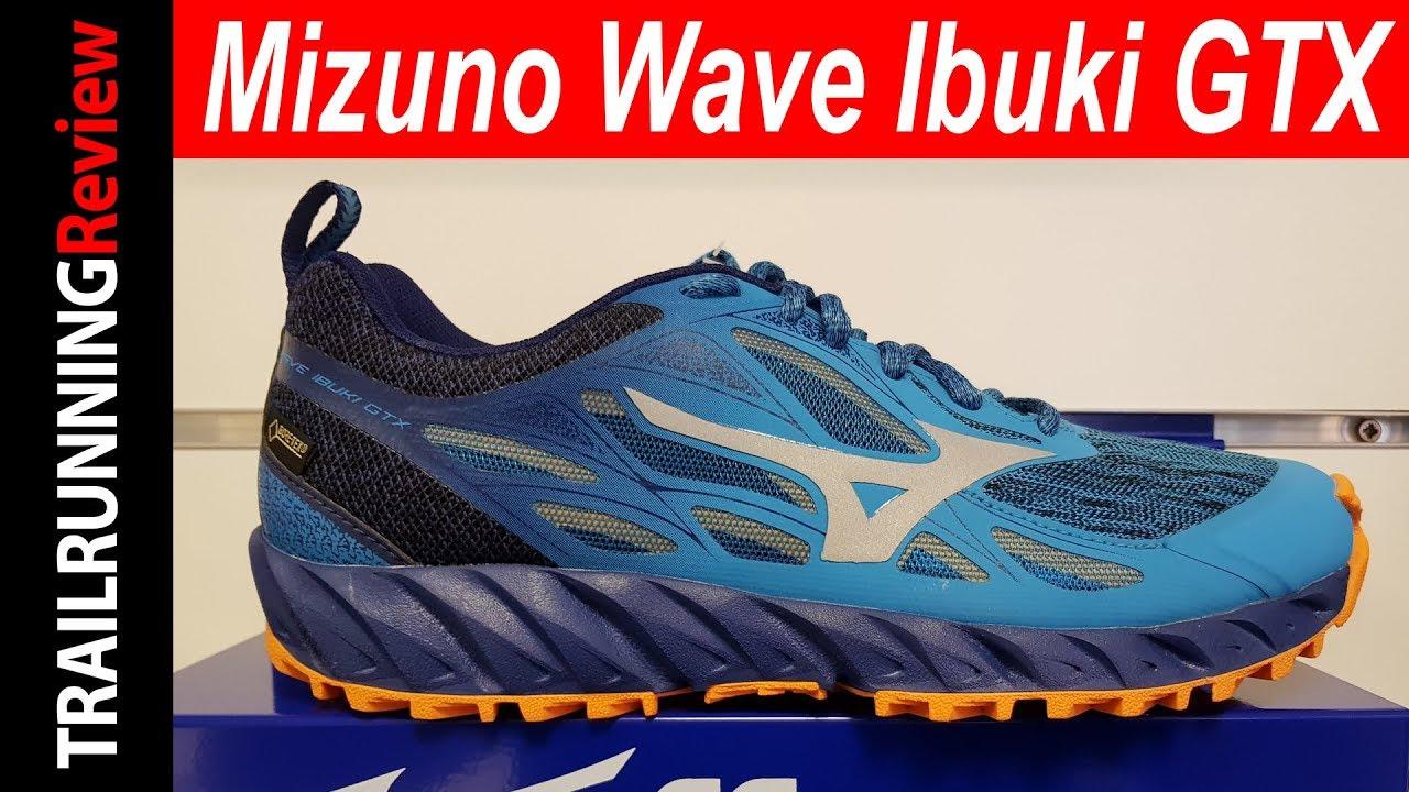 Mizuno Wave Ibuki Gtx | KOALA.CH shop online