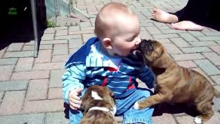 Kids and Animals - Eternal Love