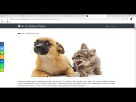 Train Cat & Dog Neural Network (tensorflow Keras): Train NN model (high level)