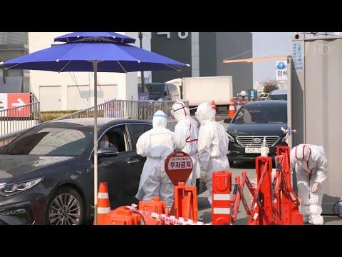 Число погибших от коронавируса нового типа по всему миру превысило три тысячи человек.