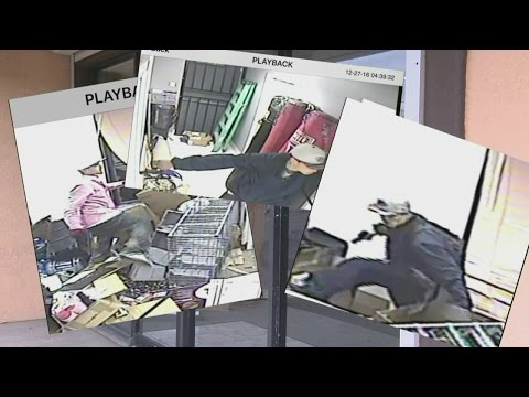 Albuquerque teen accused in gun store robberys takes plea deal