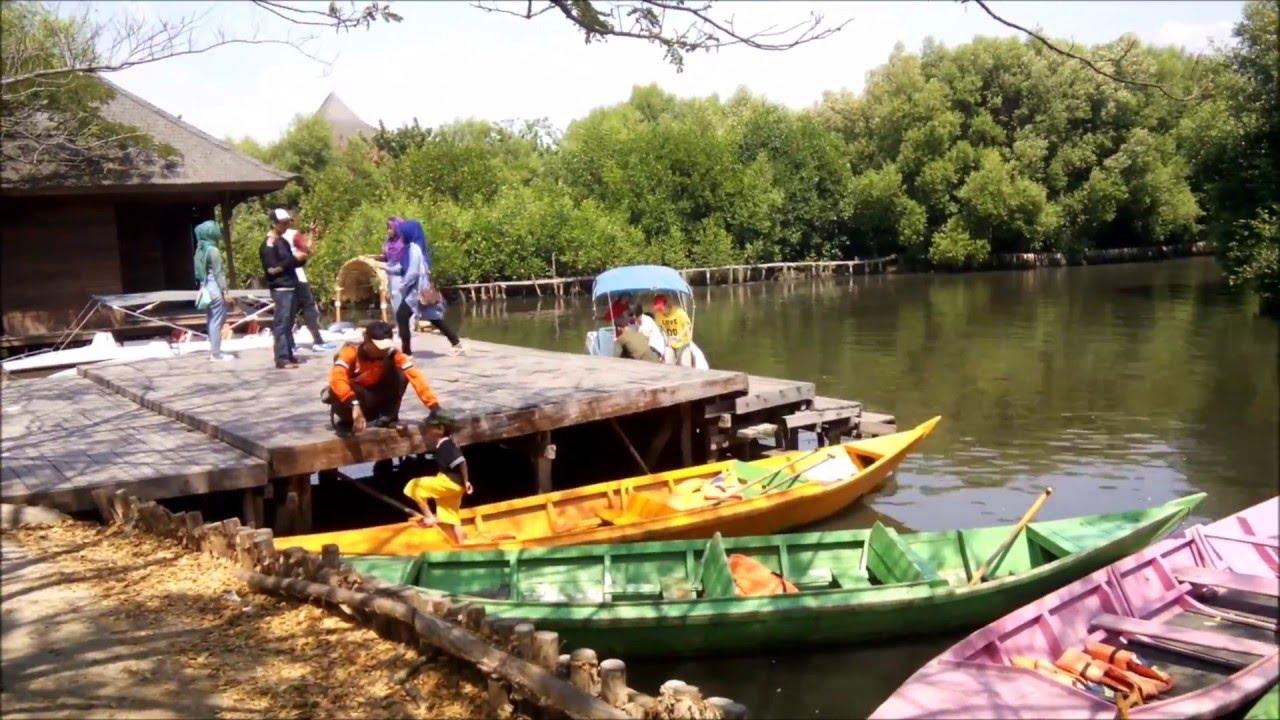 taman wisata alam hutan mangrove pantai indah kapuk jakarta rh youtube com