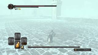 Dark Souls 2 Aava Invis Kill