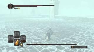 Dark Souls 2 Aava Invis Kill