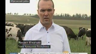 Михаил Игнатьев побывал с рабочим визитом в Ибресинском районе