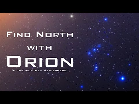 The Night Orion Fell: A Survival Story