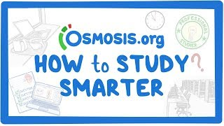 Clinician's Corner: Tips on how to study smarter