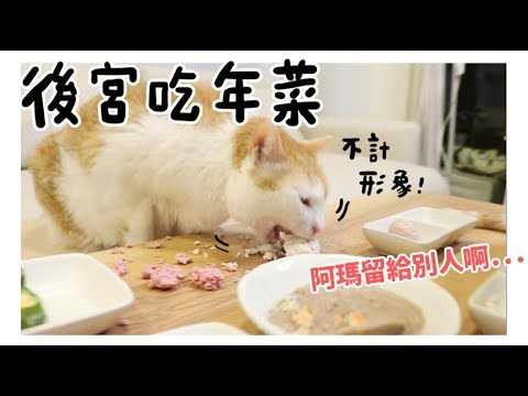 【黃阿瑪的後宮生活】後宮吃年菜!不計形象狂吃!