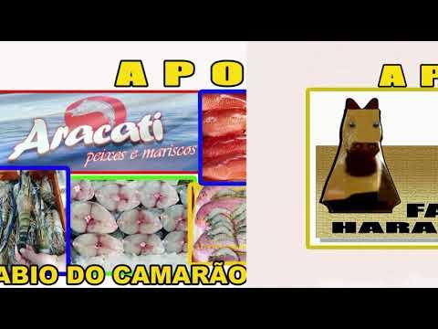 3 Páreo Cons IV GP Haras Iguatu 17 18 e 19 de Janeiro de 2020
