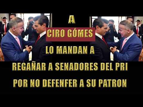 Ciro Gómez regaña a los senadores del PRI