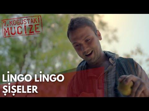 Lingo Lingo Şişeler | 7. Koğuştaki Mucize