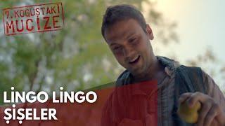 Lingo Lingo Şişeler | 7. Koğuştaki Mucize Resimi