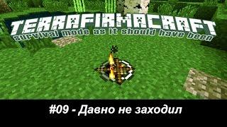 Minecraft - TerraFirmaCraft - #09 - Давно не заходил