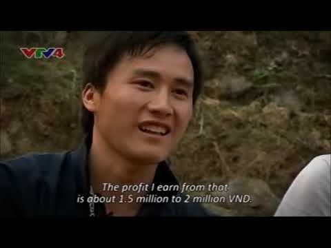 The life on the karst plateau in Ha Giang