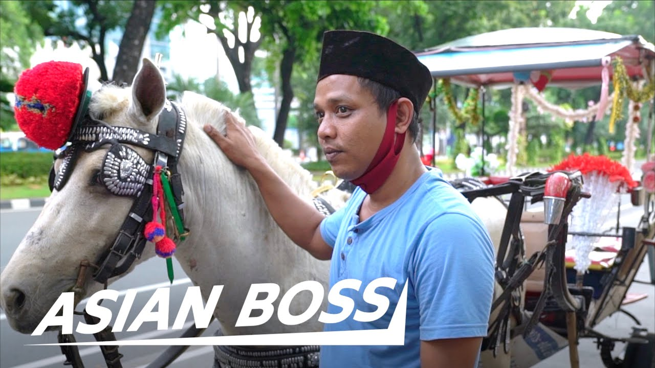 How COVID-19 Is Killing The Traditional Indonesian Horse Cart Industry | THE VOICELESS #38