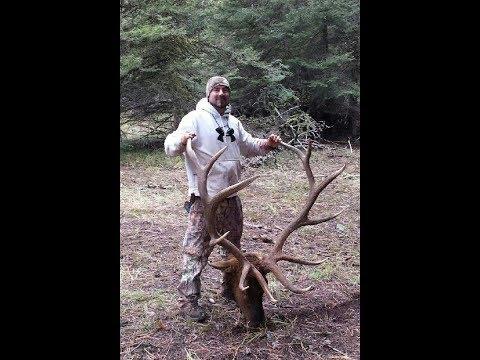 Hunting And Calling Yakama Nation Rez Bulls With Realtree