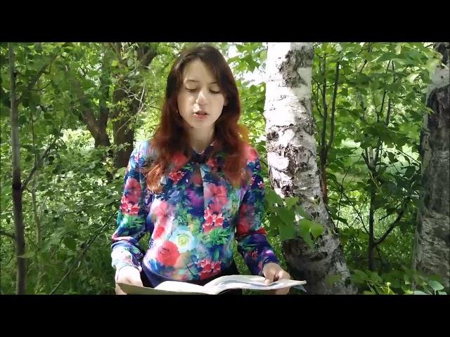Изображение предпросмотра прочтения – ВикторияСаяпина читает произведение «Пчелы» А.А.Фета