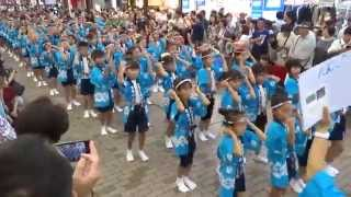 宮前小子ども連/銀柳街商店街会場/第30回 かわさき阿波おどり 2015
