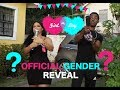 D&Z OFFICIAL BABY GENDER REVEAL!!! (WHAT ARE WE HAVING)
