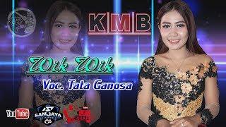 Gambar cover Wik Wik Cover Tata Ganoza KMB MUSIC Terbaru