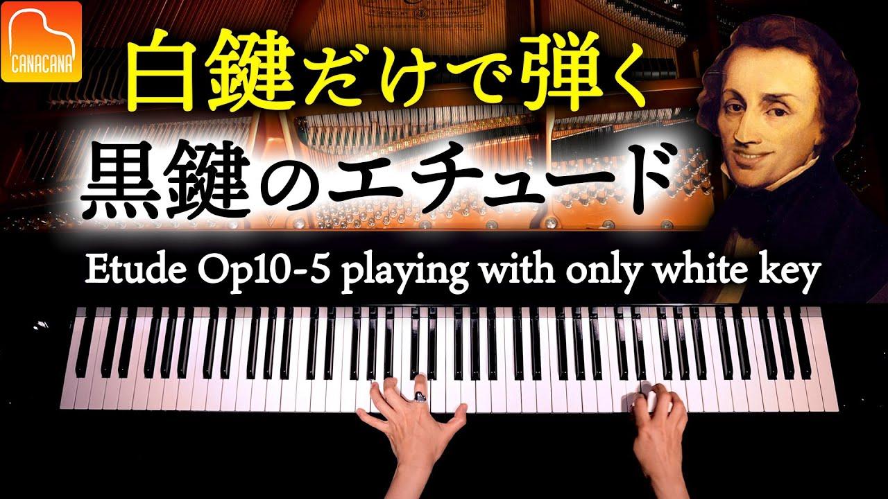 黒鍵のエチュードを白鍵だけで弾いてみた - ショパン - Etude Op.10-5 playing with only white key - Chopin -  クラシックCANACANA