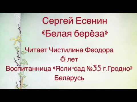 Изображение предпросмотра прочтения – ДДУNo35 читает произведение «Белая береза» С.А.Есенина