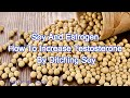 Soy And Estrogen | How To Naturally Increase Testosterone By Ditching Soy
