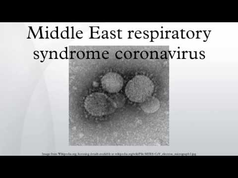 Middle East respiratory syndrome coronavirus