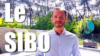 Le SIBO - Anthony Micheau Naturopathe