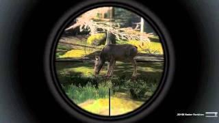 The Hunter Pc Gameplay 30 HD Moose